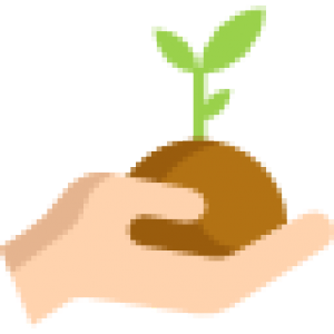 cropped-sprout-1.png